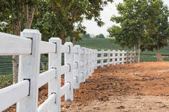 White fence in tea plantation. White fence installed on ground in tea plantation royalty free stock photography