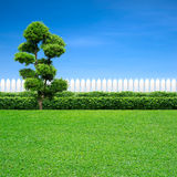 White fence and tree Royalty Free Stock Image