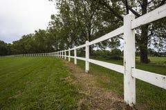 White Fencing Grass Trees Stock Photos