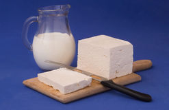 White feta cheese and milk Stock Images