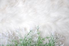 White Fibers Fabric Background Decorated with White Flower Stock Photo