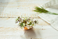 White field flowers in eggshell, napkin, green grass twig on wood surface in soft morning sunlight, Easter decoration Stock Image