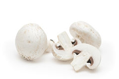 White field mushrooms. Isolated on white background Stock Photos