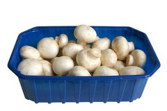 White field mushrooms in box. Isolated on white background Royalty Free Stock Photography