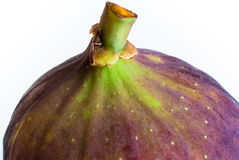 White Fig fruit Stock Photography