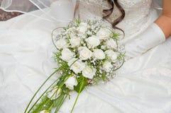 White fine rose Stock Photos
