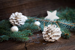 White fir cone and fir branch Stock Photo