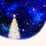 White fir tree . White fir tree and star sky Stock Photo