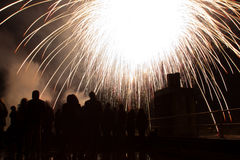 White firework Royalty Free Stock Photography