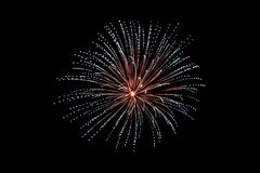 White firework. On black background Royalty Free Stock Images