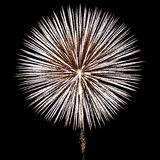 White Fireworks. Breathtaking fireworks light up the night sky on July 4 Royalty Free Stock Photo