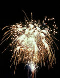 White fireworks royalty free stock images