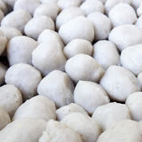 White fish balls Stock Image