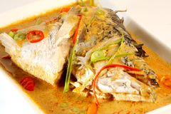 White fish kare Stock Images