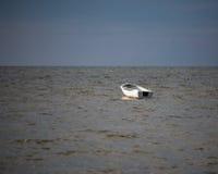 White fishing boat Stock Image