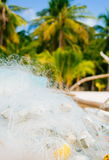 White fishing net on coral sand beach with colorful boats and palms in background Stock Photography