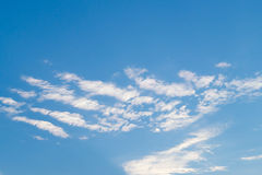 White fkuffy cloudy lines on the light-blue summery sky. White fkuffy cloudy lines on the bright  light-blue summery sky Royalty Free Stock Image