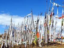 White flags as per Bhutanese customs on Dantak road. As per the Bhutanese tradition, white flags are hoisted in the memory of the dead family members so that Royalty Free Stock Images