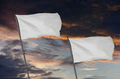 White flags war Royalty Free Stock Photography