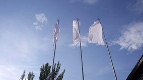White flags waving in the wind in front of the trees. And blue sky in the summer stock footage