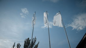 White flags waving in the wind in front of the trees. And blue sky in the summer stock video footage