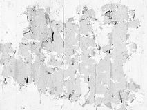 White Flaky Paint on Concrete Texture. Background texture of a grungy concrete surface with white flaky paint Royalty Free Stock Image