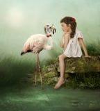 White flamingos Royalty Free Stock Photography