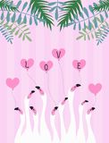 White flamingos on a pink background, heart. Tropical leaves. Illustration about love. White flamingos on a pink background, heart. Tropical leaves Royalty Free Stock Photo
