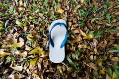 White flip flop Royalty Free Stock Photos