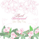 White floral Background with pink pansies Royalty Free Stock Images