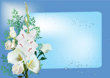 White floral design on blue background Stock Photography