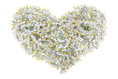 White floral heart Royalty Free Stock Photo