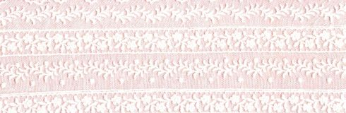 White floral lace border. Stock Image