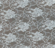 White floral lace texture for background. stock images