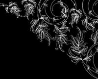 White floral sketch on a black background Royalty Free Stock Photography