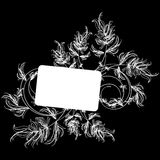 White floral sketch on a black background Stock Images