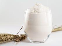 White flour. Glass of fine wheat flour with wheat, on white background Royalty Free Stock Photos