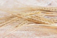 White flour and ripe wheat Stock Photos
