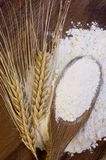 White flour with wheat ears Royalty Free Stock Photography