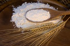 White flour with wheat ears Royalty Free Stock Photos