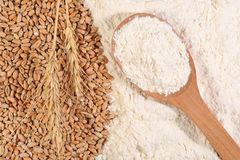 White flour in a wooden spoon and ears of wheat Stock Image