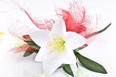 White flower. White flower on the white background Royalty Free Stock Images