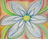 White Flower. Painting of a white flower Stock Photos