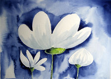 White Flower. Photograph of a watercolor painting, created by the photographer stock illustration