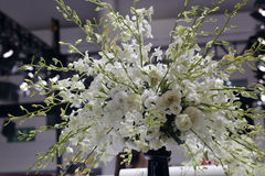White flower arrangement Royalty Free Stock Images