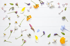 White Flower Background. Small flowers on a white wood background Royalty Free Stock Photo