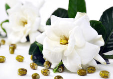 White flower with beads. Isolated on white background royalty free stock photography