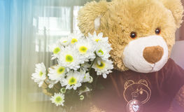 White flower bouquet with cute bear doll gift background. White flower bouquet and cute bear doll gift background royalty free stock photos
