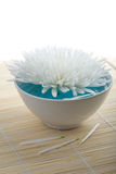 White flower floating in bowl. spa background Royalty Free Stock Photo