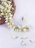 White flower garland Stock Photos
